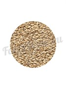 Солод светлый ячменный Pilsner Malt (1 кг.) Курский солод