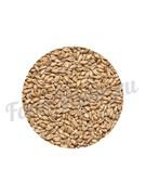 Солод пшеничный Wheat malt (1 кг.) Курский солод