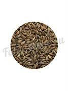 Солод ржаной ферментированный (1 кг.) Росток