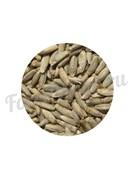 Солод ржаной неферментированный (1 кг.) Росток